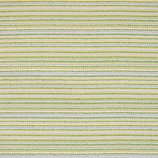 Lime Decorator Fabric by Silver State