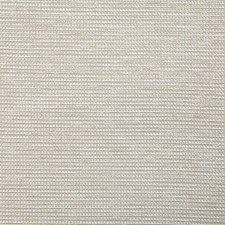 Champagne Solid Decorator Fabric by Pindler