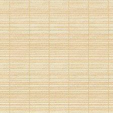 Bone Texture Decorator Fabric by Groundworks