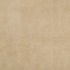 Beige Contemporary Decorator Fabric by Groundworks