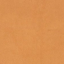Antilope Decorator Fabric by Scalamandre
