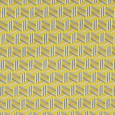 Citron Decorator Fabric by Scalamandre