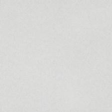 Alabaster Decorator Fabric by Scalamandre