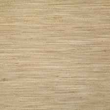 Tussah Decorator Fabric by Pindler