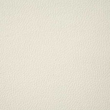Cream Solid Decorator Fabric by Pindler