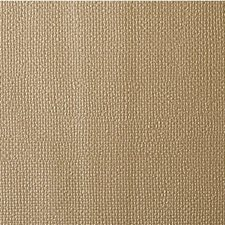 Gold Dust Solids Decorator Fabric by Kravet