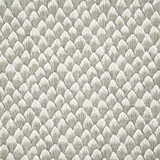 Stone Print Decorator Fabric by Pindler