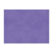 Regal Orchid Solids Decorator Fabric by Brunschwig & Fils