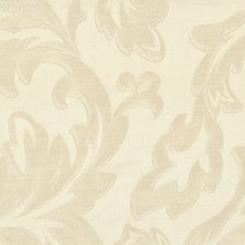 Shell Decorator Fabric by Stout