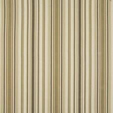Earthen Decorator Fabric by Kasmir