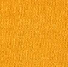Citrus Solid Decorator Fabric by Pindler