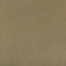 Bayleaf Solids Decorator Fabric by Kravet