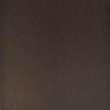 Sable Decorator Fabric by Ralph Lauren