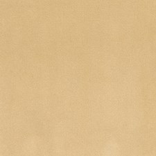 Butterscotch Decorator Fabric by Silver State