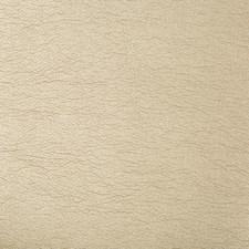 Pewter Metallic Decorator Fabric by Kravet