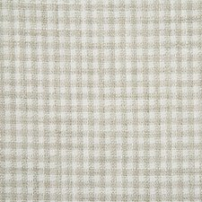 Dove Check Decorator Fabric by Pindler
