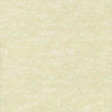 Dawn Decorator Fabric by Kasmir