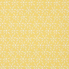 Sunshine Decorator Fabric by Pindler