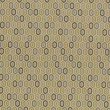 Citrus Decorator Fabric by Kasmir
