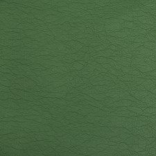 Chive Solids Decorator Fabric by Kravet