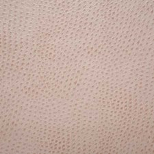 Rosewater Decorator Fabric by Pindler