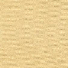 Topaz Decorator Fabric by RM Coco