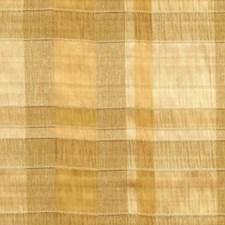 Vestige Decorator Fabric by RM Coco