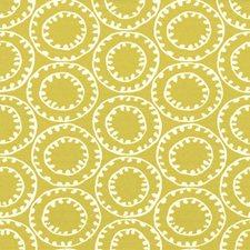 Honeydew Decorator Fabric by Kasmir