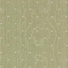 Basil Decorator Fabric by Robert Allen