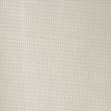 Champagne Metallic Decorator Fabric by Kravet