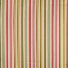 Springtime Decorator Fabric by Kasmir