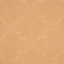 Brshd Gold/Brshd Gold Decorator Fabric by RM Coco