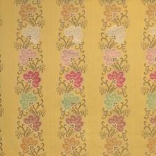 Multi/Maize Decorator Fabric by Scalamandre