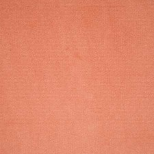 Peach Solid Decorator Fabric by Pindler