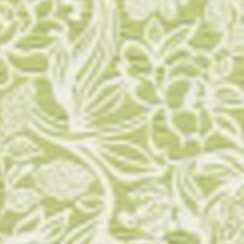 Chartreuse Decorator Fabric by RM Coco