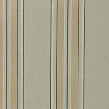 Greystone Decorator Fabric by RM Coco