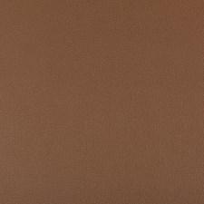 Brunette Solids Decorator Fabric by Kravet