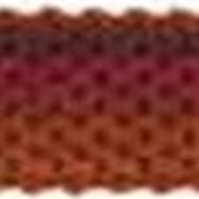 Gimp Burgundy/Red/Pink Trim by Kravet