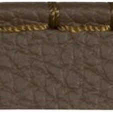Cord Without Lip Peat Trim by Kravet