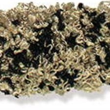 Moss Black/Beige Trim by Kravet