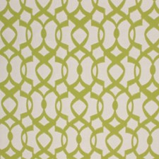 Citrus Decorator Fabric by RM Coco