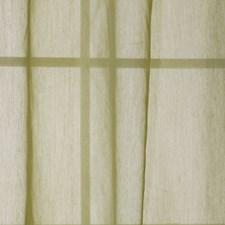 Sprout Decorator Fabric by Robert Allen /Duralee