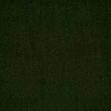Loden Solid Decorator Fabric by Pindler