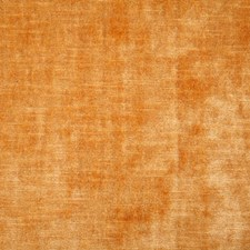 Apricot Solid Decorator Fabric by Pindler