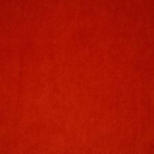 Mandarin Solid Decorator Fabric by Pindler