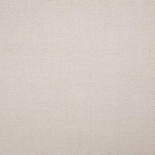 Powder Solid Decorator Fabric by Pindler