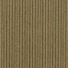 Alpine Decorator Fabric by Robert Allen