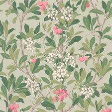 Pink/Duck Egg Wallcovering by Cole & Son Wallpaper