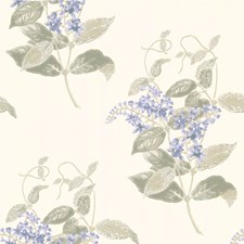 Violet/Grey Wallcovering by Cole & Son Wallpaper