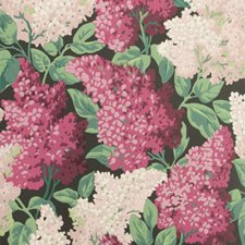 Magenta/Blush/Charco Print Wallcovering by Cole & Son Wallpaper
